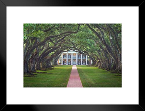 Poster Foundry Oak Alley Plantation View Through Oak Trees Photo Art Print Matted Framed Wall Art 26x20 inch