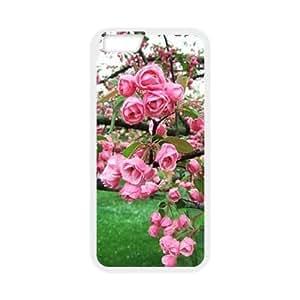 Flowers CUSTOM Phone Case for iPhone6 Plus 5.5 hjbrhga1544