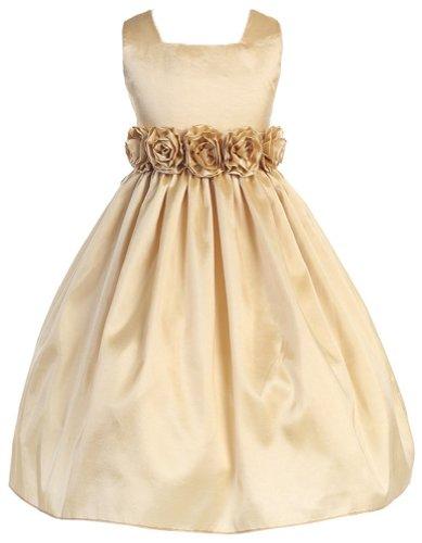 Sweet Kids Big Girls' Slvless Dress Rolled Flw Waistband 7 Champagne (SK - Sash Colors Light Taffeta