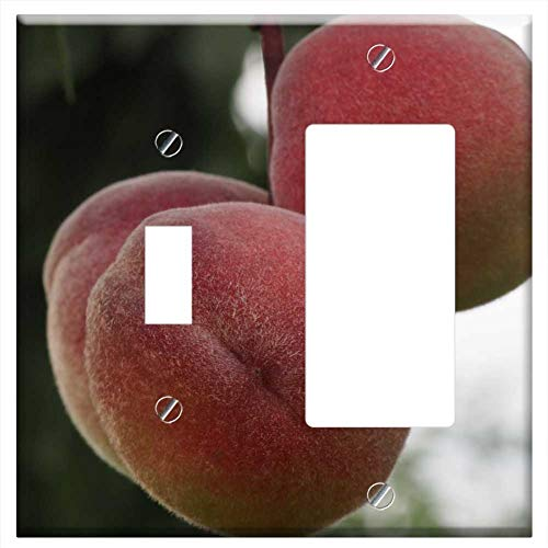 1-Toggle 1-Rocker/GFCI Combination Wall Plate Cover - Peach Fruit Healthy Peach Tree Eat Fruits