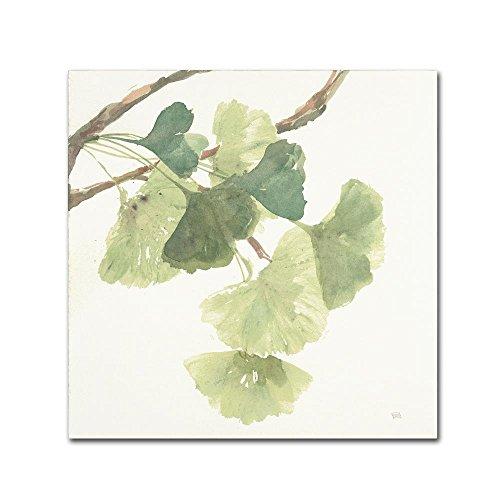 Ginko Leaf Wall - Trademark Fine Art Gingko Leaves I Light by Chris Paschke, 24x24-Inch Canvas Wall Art