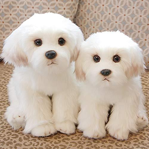(Bichon Frise Puppy Stuffed Animal Dog Plush Toy Cute Simulation Pets Fluffy Baby Dolls Birthday Gifts for Children g)