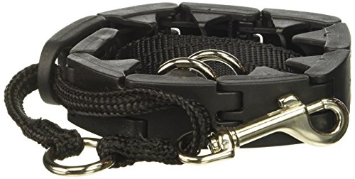 Star Mark Pro-Training Dog Collar, Large - 21""