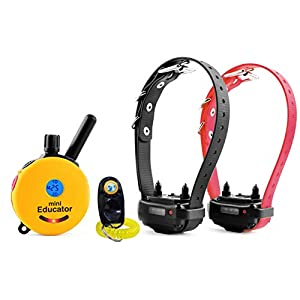 Bundle of 2 Items – E-Collar – ET-302 – Half a Mile Remote Waterproof Two Dog Trainer Mini Educator – Static, Vibration and Sound Stimulation Collar With PetsTEK Dog Training Clicker Training Kit