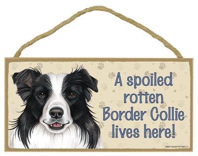 SJT ENTERPRISES, INC. A Spoiled Rotten Border Collie Lives here Wood Sign Plaque 5