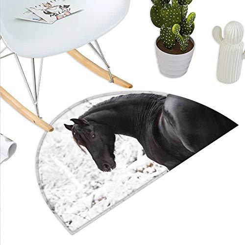 (Anniutwo Equestrian Half Round Door mat Black Friesian Sport Horse Portrait on a Snowy Winter Background Novelty Picture Half Round Indoor Door mat White)