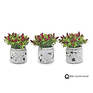 Q me Set of 3 Artificial Potted Chili Plant: Lifelike Looking Green-Leaf Plant in Vintage Mason Jar with 24 Red Chili Peppers for Home or Work Décor or Gift 104
