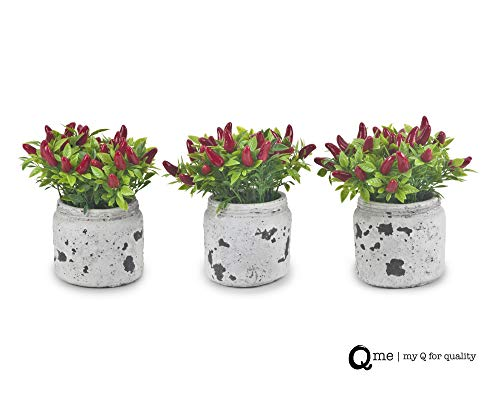 (Q me Set of 3 Artificial Potted Chili Plant: Lifelike Looking Green-Leaf Plant in Vintage Mason Jar with 24 Red Chili Peppers for Home or Work Décor or Gift)