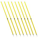 Energi 8_blu Speed Fitness Crossfit Workout Slalom Soccer Agility Telescopic Poles 8pc 5 Foot
