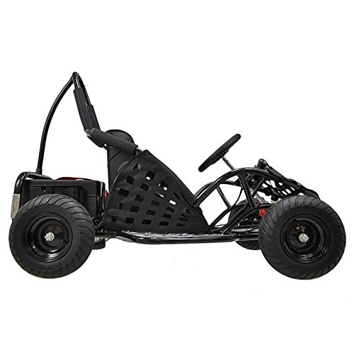 Top 9 Best Off Road Go Kart Reviews in 2018 - 9topbest.com