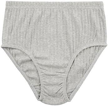 Hanes Women's Plus Size Cotton Brief Panties | Hanes