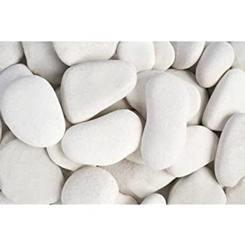 Margo 30lb. Large Flat Caribbean Beach Pebble 3 in. to 5 in. …