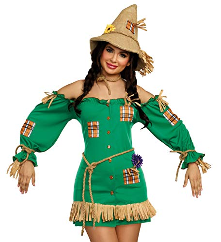 Dreamgirl Women's Storybook Scarecrow Costume Dress, Green,