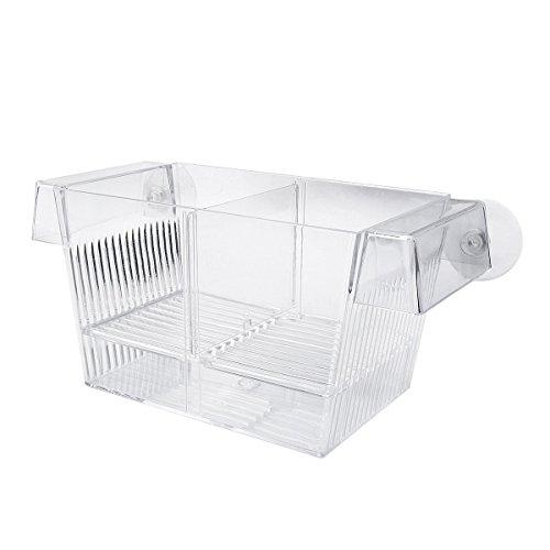 Guppy Breeder (Saim Plastic Aquarium Fish Hatchery Breeder Box)