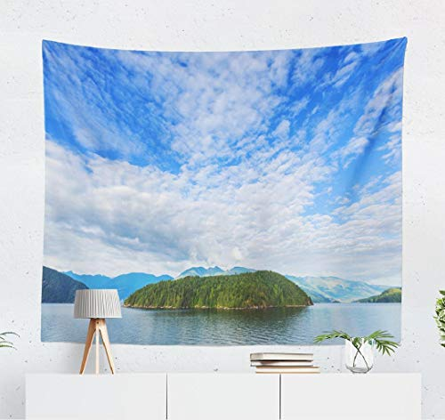 Deronge Island Tapestry, Vancouver Island Canada Beach Blue Tapestry Wall Hanging Decor 50x60 Inch Wall Art Tapestry for Men Bedroom Home Decor Decorative Tapestry Dorm Decor,Vancouver Island
