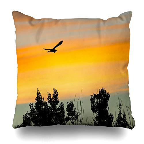 Ahawoso Throw Pillow Cover Square 16x16 Great Blue Black Heron Wild Bird Silhouetted Long Sunset in Sky Animals Evening Wildlife Nature As Decorative Cushion Case Home Decor Zippered Pillowcase (Silhouetted Bird)