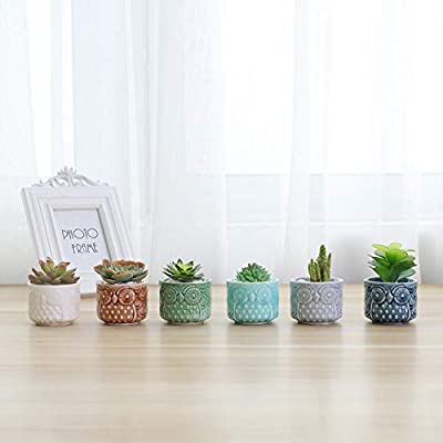 T4U Small Ceramic Succulent Planter Pot, Cute Owl Bonsai Pot for Decor Desktop Windowsill Bookshelf, Perfect Gift on Christmas and Birthday, Pack of 6(Excluding Plants): Garden & Outdoor