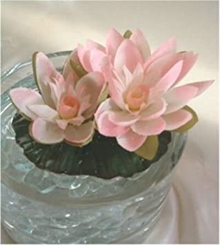 Amazon artificial floating water lily cream pink pond fountain artificial floating water lily cream pink pond fountain plant wedding lilies silk flowers arrangements garden pond mightylinksfo Images