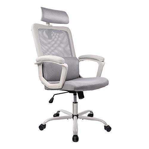 Smugdesk Ergonomicfice Chair High