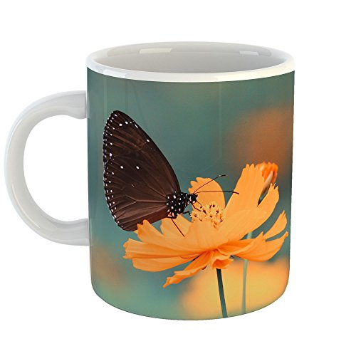Monarch Palette - Westlake - Coffee Cup Mug - Butterfly Flower - Modern Picture Photography Artwork Home Office Birthday Gift - 11oz (69m edf)