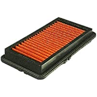 FRAM PPA6807 Air Hog Panel Filter