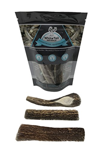 WhiteTail Naturals Premium Split Elk Antlers for Dogs – 3 Pack Small – All Natural Dog Chews – USA Natural Shed – 4 to 5 Inch Long Odorless & Mess Free – Small Antler Chew – For Sale