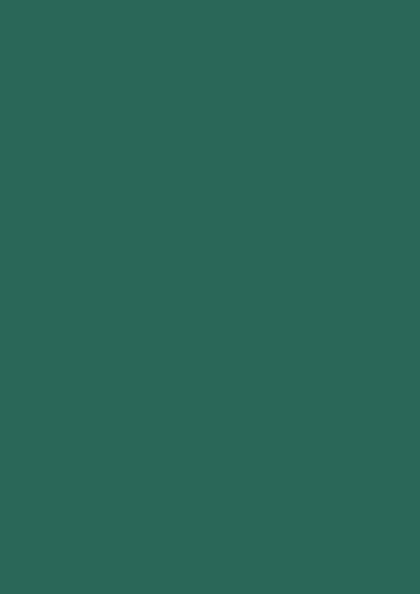 Heyda 203310559 Seidenpapier 50 x 70 cm dunkelgrün SC-MS-203310559