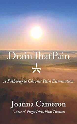Drain ThatPain: A Pathway to Chronic Pain Elimination