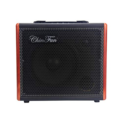 Acoustic 30 30w Amp Guitar - FLEOR ChinFun Professional 30W Acoustic Guitar Amplifier Amp with 2 Channels, Chorus and Delay Effects - Wood108