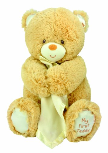 Kids Preferred Special Delivery Snuggler Plush Toy, Bear