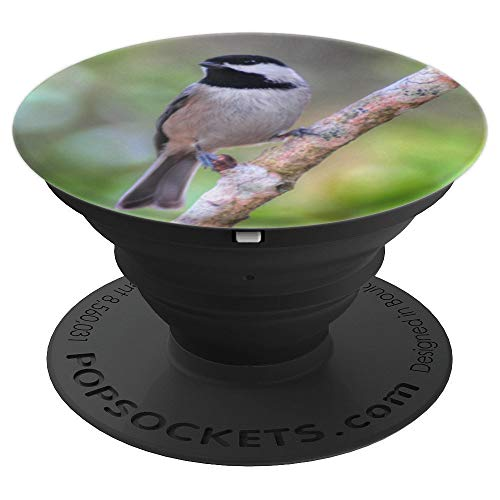Black Capped Chickadee Bird Photograph Bird Watcher Gift - PopSockets Grip and Stand for Phones and Tablets