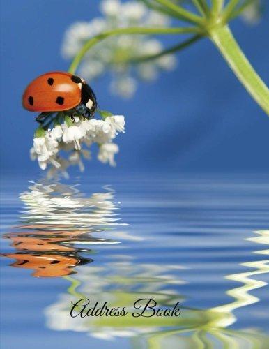 Address Book (Large Address Books-Ladybug Series) (Volume 67) pdf