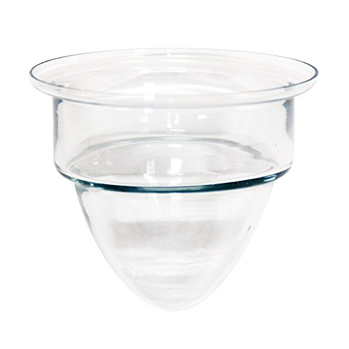 Achla Designs G-01/02 Clear Glass Votive Candle Cup, Black
