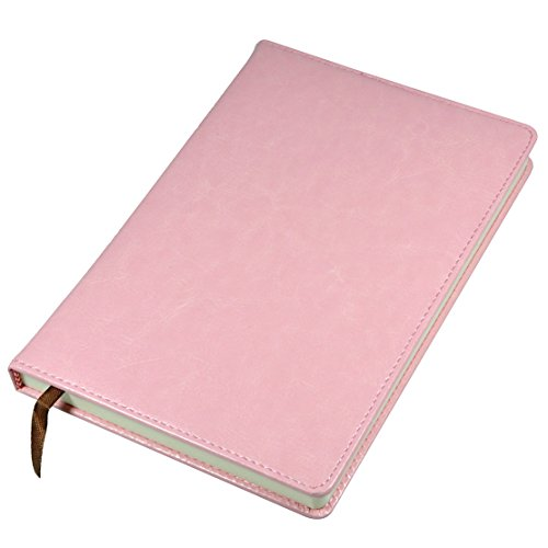 Pink Diary - 4