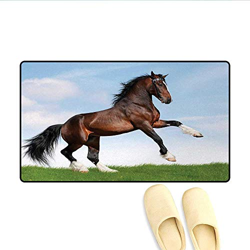 Door Mats,Bay Horse Pacing on The Grass Energetic Noble Character of The Nature Concept,Bath Mats for Bathroom,Blue Green Brown,Size:32