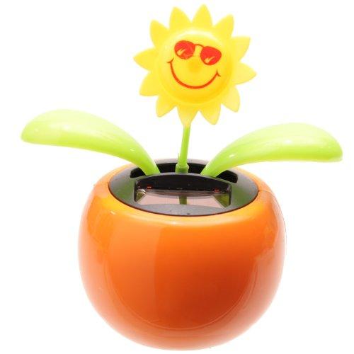 8d99fb569fbfe PK Green Solar Powered Dancing Flower Plant Pot - Flip Flap Sunflower ( Orange) by  Amazon.co.uk  Kitchen   Home
