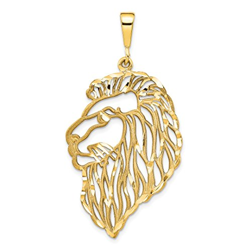 14k Yellow Gold Filigree Lions Head Pendant Charm Necklace Animal Lion Tiger Fine Jewelry For Women Gift Set