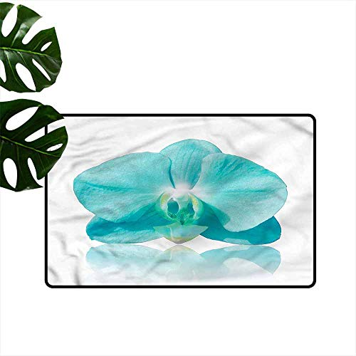 - Interesting Doormat Aqua Blue Orchid Nature Botanic Quick and Easy to Clean W31 xL47