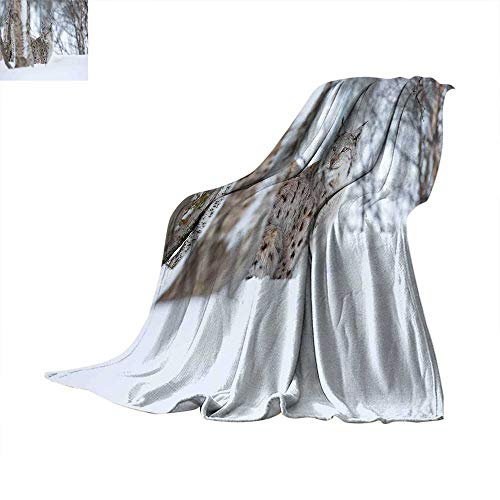 Animal Queen Flannel Blanket European Lynx Snowy Cold Forest Norway Nordic Country Wildlife Apex Predator Thicken Blanket Extra Big 90 x 70 inchPale Brown White