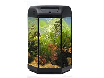 Acuario Juego completo aquael Hexa Set II 20 L, color negro: Amazon.es: Productos para mascotas