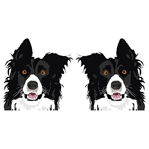 SignMission Border Collie Decal | Indoor/Outdoor | Dog Lover Super Cute Sticker for SUV Windows, Dorm Rooms, Bedroom, Offices personalized gift | 2 Pack of - Collie Dog Sticker
