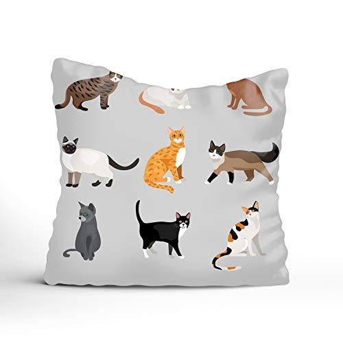 (Wintersunny Pillowcase Set of Cute Cartoon Kitties Decor Throw Pillow Cover with Hidden Zipper for Bedroom Sofa 20