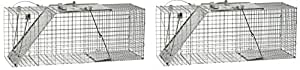 Havahart 1085 Easy Set One-Door Cage Trap for Raccoons, Stray Cats, Groundhogs, Opossums, and Armadillos (Pack of 2)