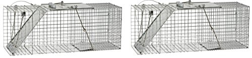 et One-Door Cage Trap for Raccoons, Stray Cats, Groundhogs, Opossums, and Armadillos (Pack of 2) (Havahart Easy Set)