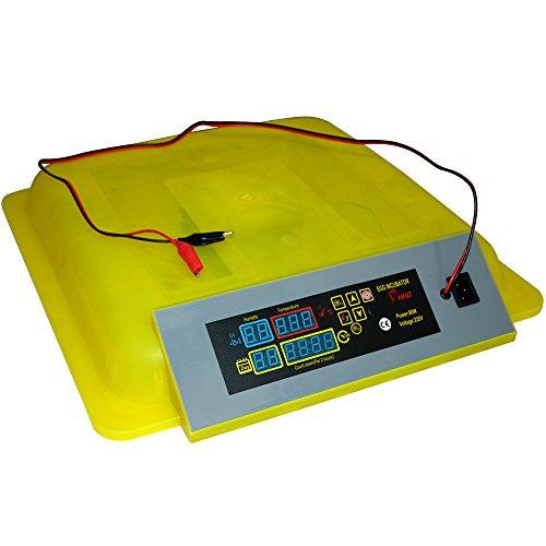 Solarnovo Incubadora Automática para Huevos de Gallinas Aves con Control de Temperatura Manual con Pantalla Digital Máquina de Eclosión (48 Huevos): ...