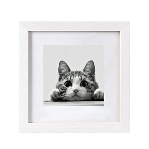 10x10 picture frame - 6