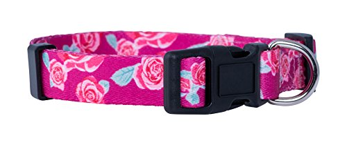 Native Pup Flower Dog Collar/Paisley Dog Collar (Medium, Roses)
