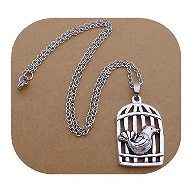 GYKMDF - Collar de Jaula de pájaros romántico, Plata Simple ...