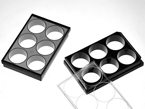 Cellvis 6 Well Glass Bottom Plate with high performance #1.5 cover glass P06-1.5H-N