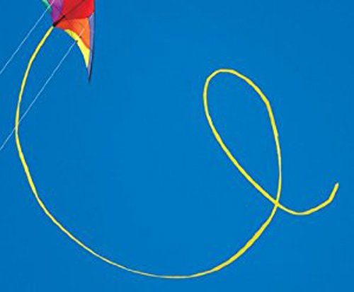Prism Nexus Dual Line Delta Framed Stunt Kite with 40' Tail Bundle (3 Items) + Prism 40ft Ripstop Streamer Tail Yellow + WindBone Kiteboarding Lifestyle Stickers + Key Fob (Spectrum) by Prism, WindBone (Image #4)